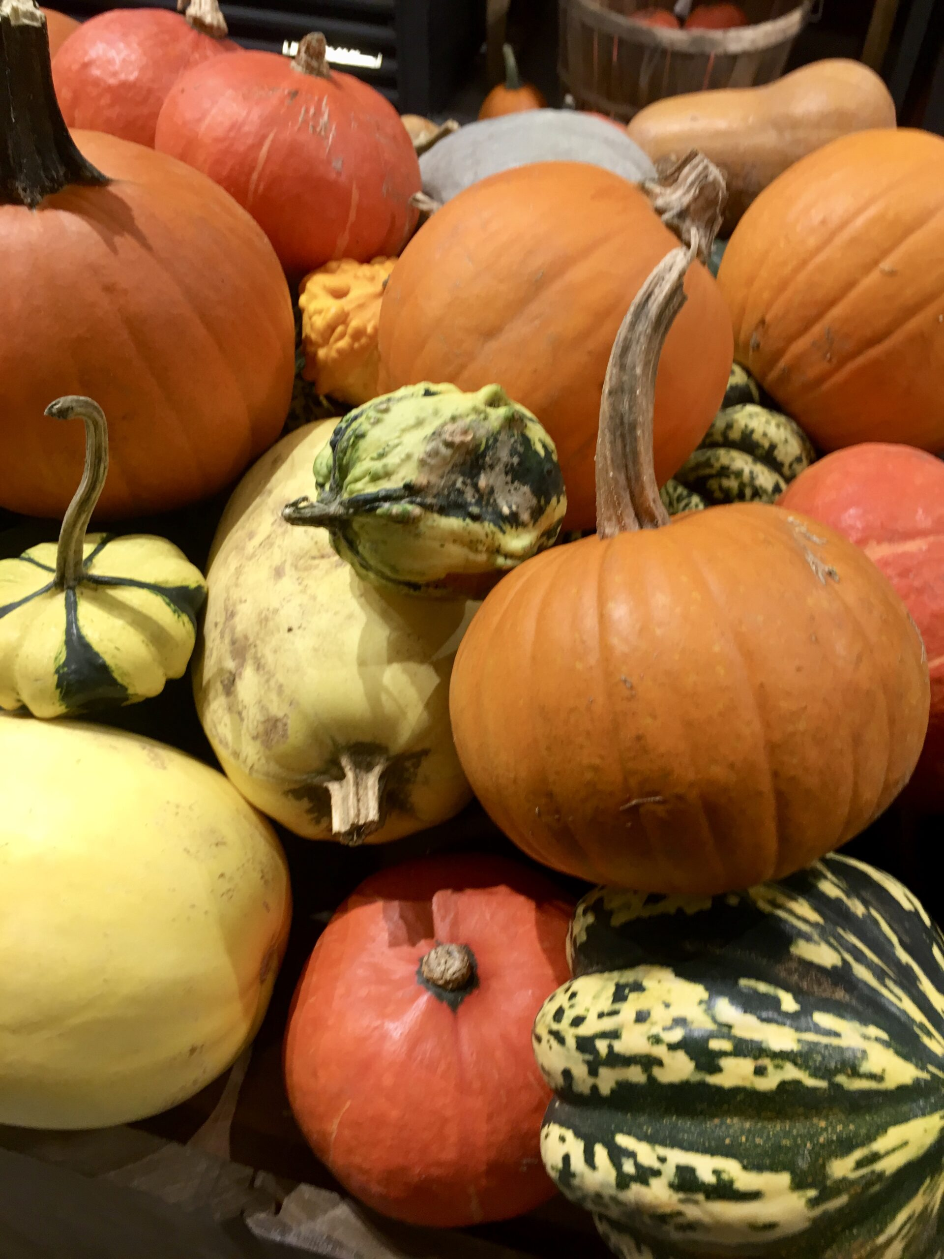 assorted colorful pumpkins at farmstand