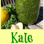 Kale Pesto combines the trendy super food kale withtoasted almonds and a hint of lemon to make an amazingly delicious, healthy, easy pesto recipe! Toss it with your favorite pasta for Meatless Monday, top chicken or fish, serve with vegetables......the possibilities are endless!