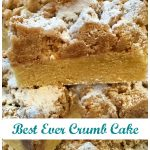 Every bite of our Best Ever Crumb Cake is heavenly when a rich vanilla-scented cake is topped with buttery cinnamon crumbs kissed with powdered sugar!