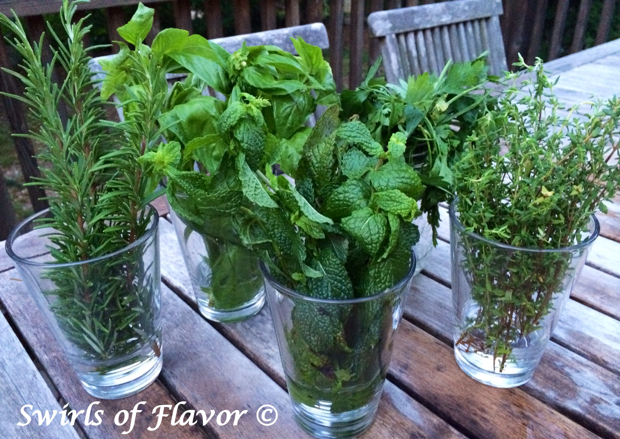 bunches of fresh herbs in glasses on a table