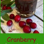 Cranberry Maple Vinaigretteis an easy recipe for homemade salad dressing that combines your leftover cranberry sauce with maple syrup and balsamic vinegarfor a sweet and tangy vinaigrette that compliments any salad! #cranberrysauce #homemadevinaigrette #homemade #maplesyrup #leftovercranberrysauce #Thanksgivingleftovers #balsamicvinegar Thanksgiving #easyrecipe #swirlsofflavor