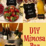 DIY Mimosa Baar with step by step