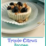 Made with fresh blueberries, yogurt and granola, Triple Citrus Blueberry Frozen Yogurt Cups are a refreshing and nutritious frozen snack, dessert or breakfast and the perfect way to cool off on a hot day.