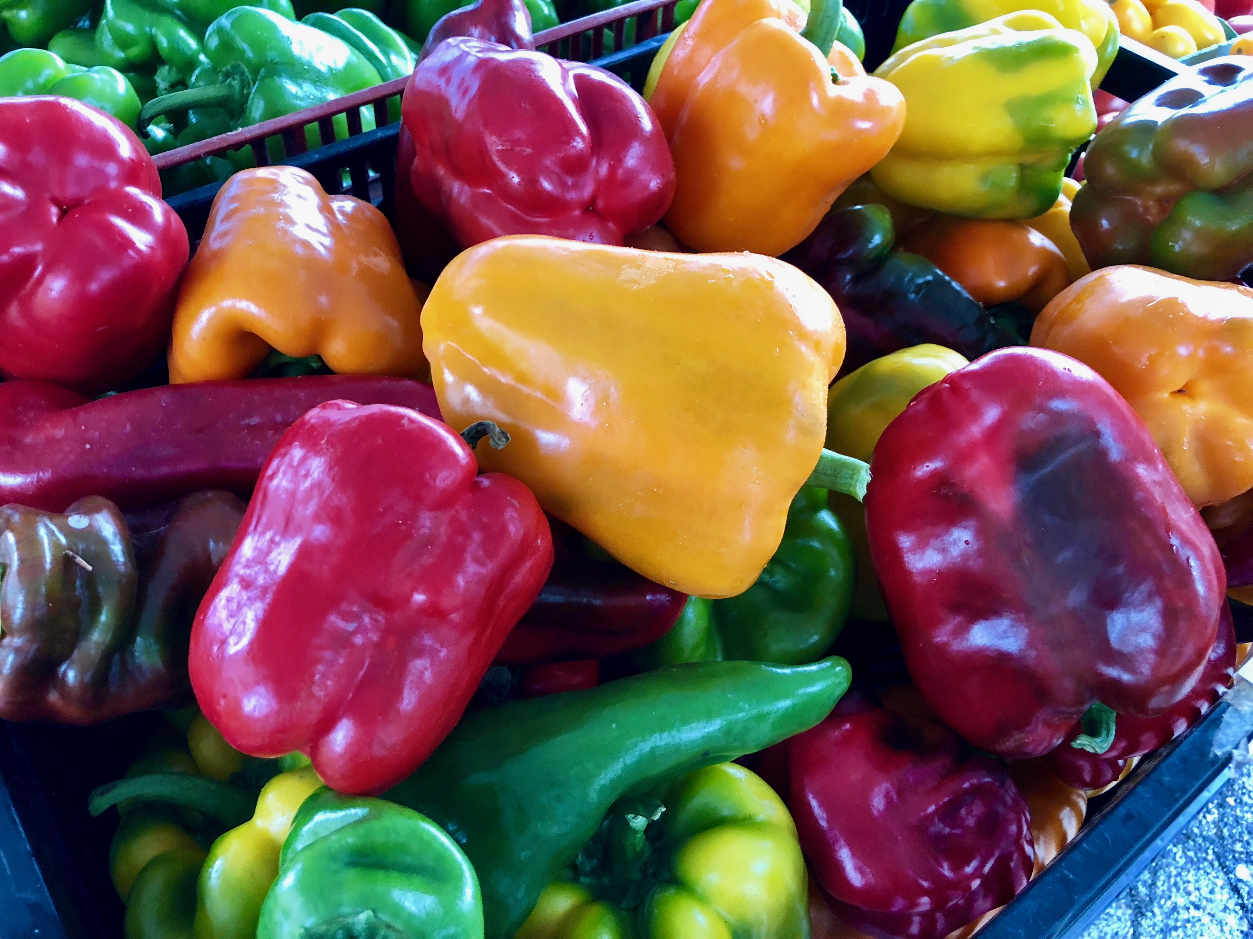 red, green, yellow and range bell peppers
