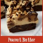 Peanut Butter Brownies with Peanut Butter Frosting and candy on top