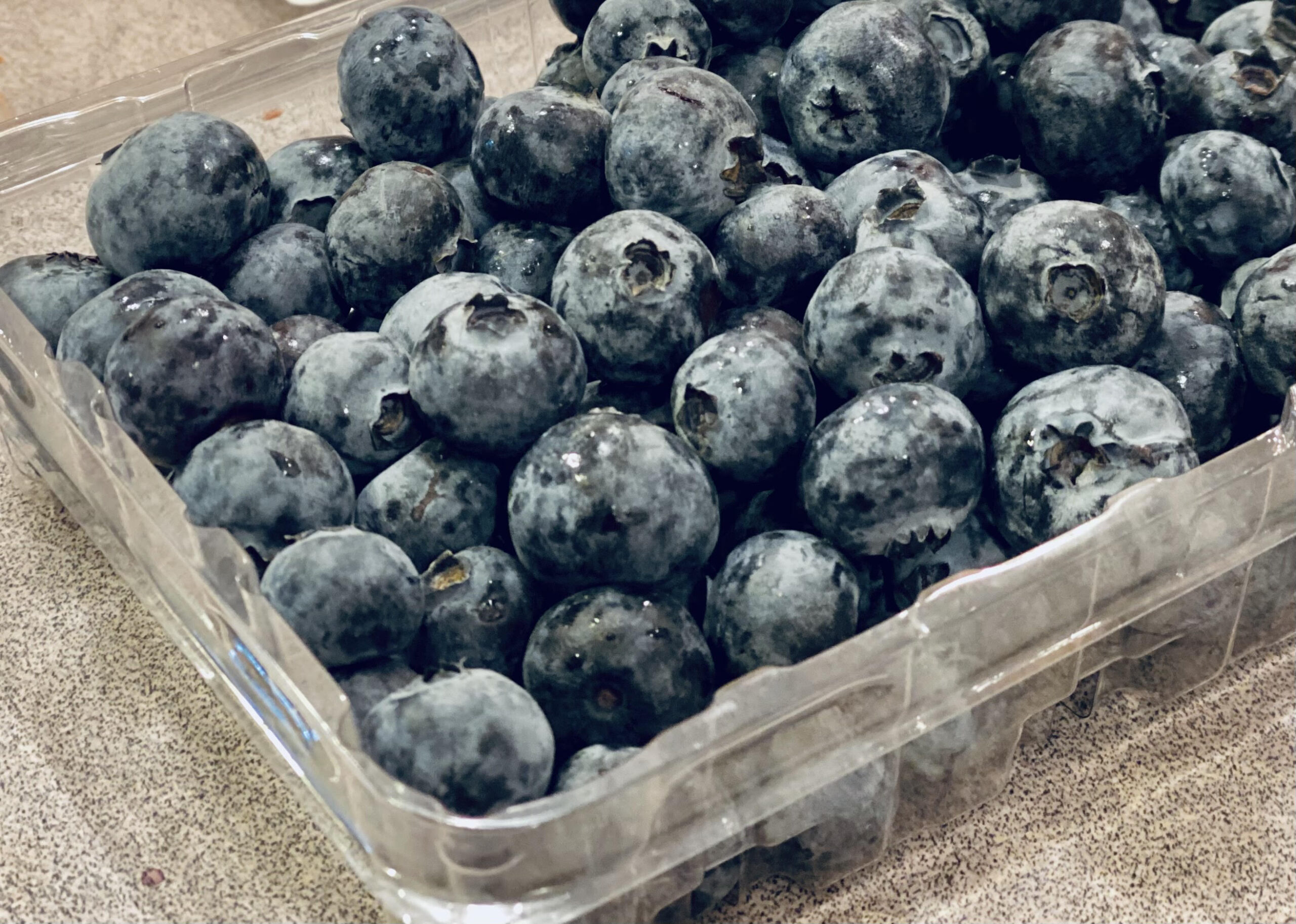 fresh blueberries in a container