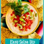 Sal with chipssa Dip in bowl